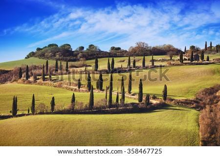 Cypress trees scenic road. Siena, Tuscany, Italy. - stock photo