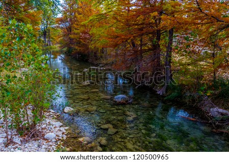 Cypress Trees with Stunning Red and Orange Fall Color Lining a Crystal Clear Texas Hill Country Stream. - stock photo