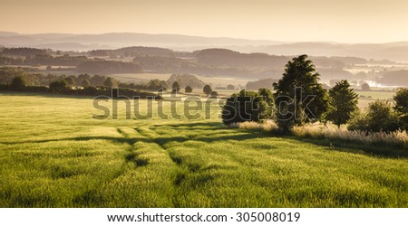 Czech (Bohemian) early morning landscape - trees, field, dawn haze and hills.
