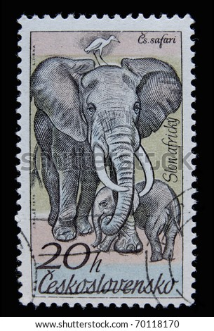 CZECH REPUBLIC- CIRCA 1976: A post stamp printed in Czechoslovakia shows elephant, series African animals , circa 1976 - stock photo