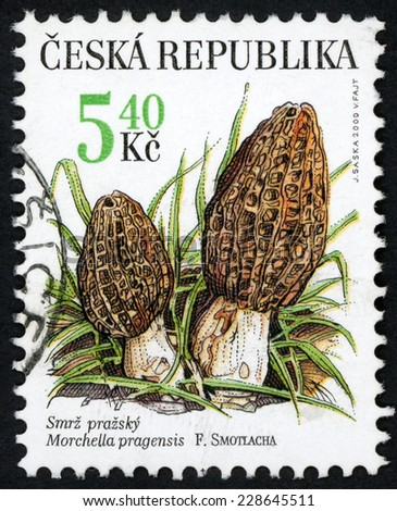 CZECH REPUBLIC - CIRCA 2000: stamp printed in Czechoslovakia (Ceska) shows illustration of two Morchella pragensis (smrz prazsky; morel) edible mushroom; Scott 3127 A1179 5.40k brown green, circa 2000 - stock photo