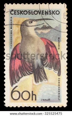 CZECHOSLOVAKIA - CIRCA 1965: A postage stamp printed in Czechoslovakia shows a Wallcreeper, Tichodroma muraria, a small bird found throughout the high mountains of Eurasia, circa 1965 - stock photo