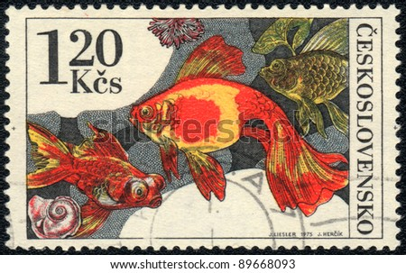CZECHOSLOVAKIA - CIRCA 1975: A Stamp printed in CZECHOSLOVAKIA shows a   Goldfish,  circa 1975