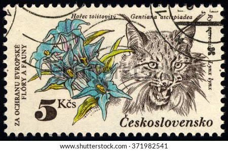 "CZECHOSLOVAKIA - CIRCA 1983: A stamp printed in Czechoslovakia shows flowers and Lynx with the inscription ""Gentiana asclepiadea, Lynx lynx"", series animals, circa 1983 - stock photo"
