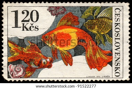CZECHOSLOVAKIA - CIRCA 1975: A stamp printed in Czechoslovakia, shows goldfish  (Carassius auratus), circa 1975