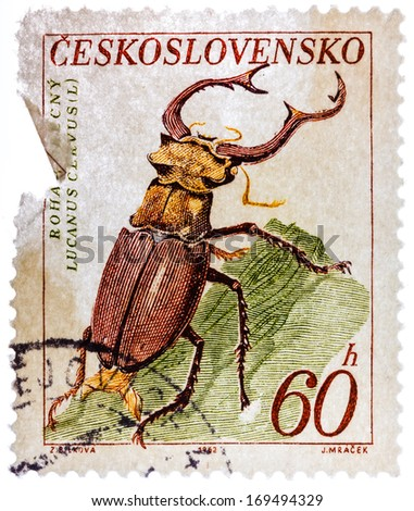 CZECHOSLOVAKIA - CIRCA 1962: Postage stamp printed by Czechoslovakia, shows Stag beetle, circa 1962 - stock photo