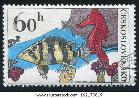CZECHOSLOVAKIA - CIRCA 1975: stamp printed by Czechoslovakia, shows Datrioides Microlepis and Sea Horse, circa 1975