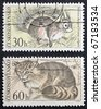 CZECHOSLOVAKIA - CIRCA 1966: two stamps printed in Czechoslovakia shows images of  Squirrel and Wildcat. Czechoslovakia, circa 1966 - stock photo