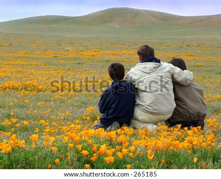 Dad and sons sitting in poppy field - stock photo