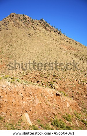 dades valley in  atlas moroco   africa ground tree  and nobody