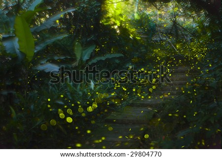daemon in Forest - stock photo