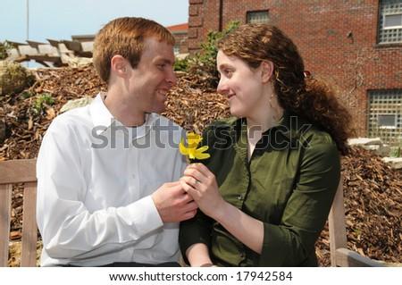 Daffodil gift - stock photo