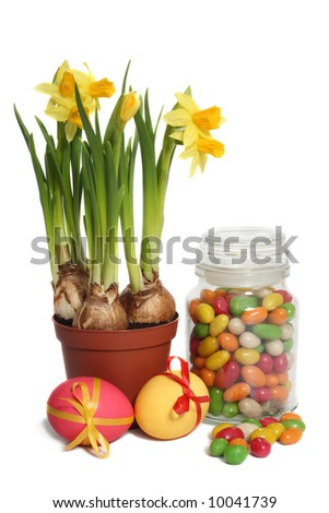 Daffodils, easter eggs and jar of jelly beans, isolated on white background