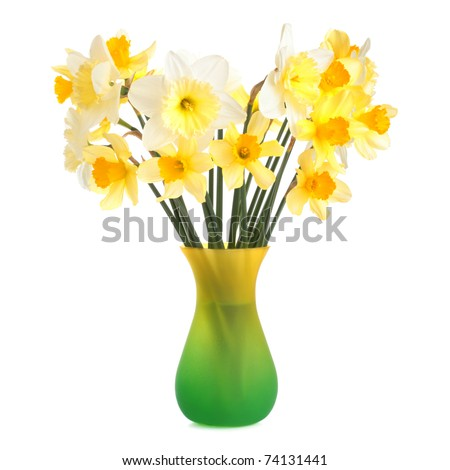 Daffodils in a yellow-green vase on white background - stock photo