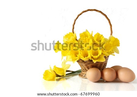 Daffodils in basket with Eastern eggs against white background