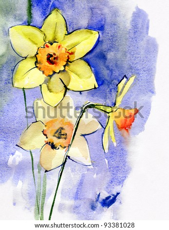 Daffodils on a blue background. Watercolor. - stock photo