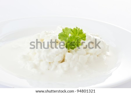 Dairy cottage cheese with milk sauce on a white plate - stock photo