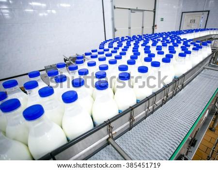 Dairy plant, conveyor with milk  bottles  - stock photo