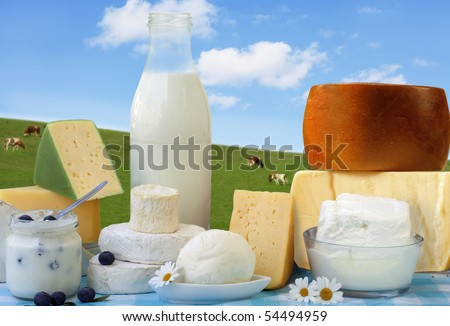dairy products in glass containers and Cheese - stock photo