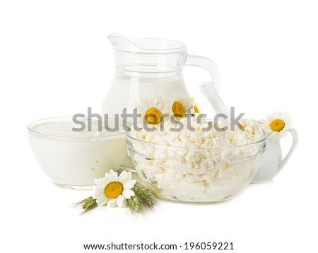 Dairy Products. Milk, cream, sour cream and cottage cheese - stock photo