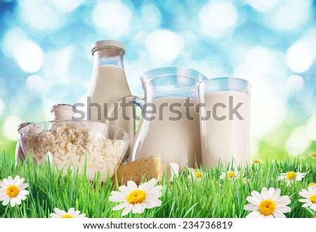 Dairy products on the grass. Background - blurry sunny skies. - stock photo