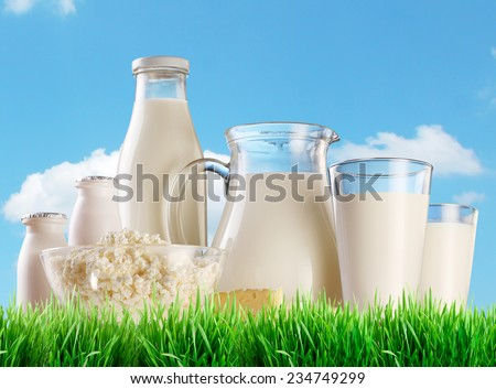 Dairy products on the grass. Background - sunny skies. - stock photo