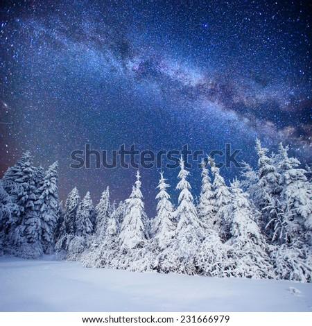 Dairy Star Trek in the winter woods - stock photo