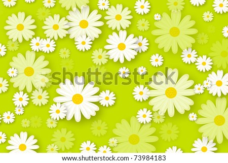 daisies background - stock photo