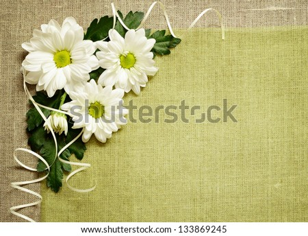 Daisies composition on canvas background - stock photo