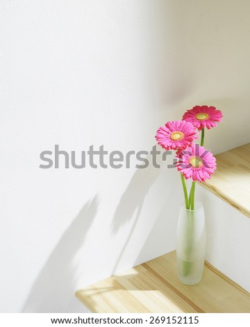 daisies in vase - stock photo