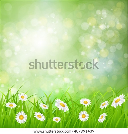 daisy background summer design flower green garden nature illustration. Spring background with grass, daisies and bokeh lights. Raster version