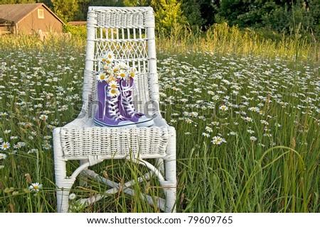 daisy bouquet in purple sneakers on wicker chair - stock photo