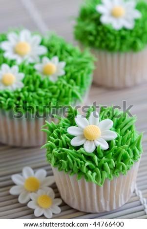 Daisy cupcakes - stock photo