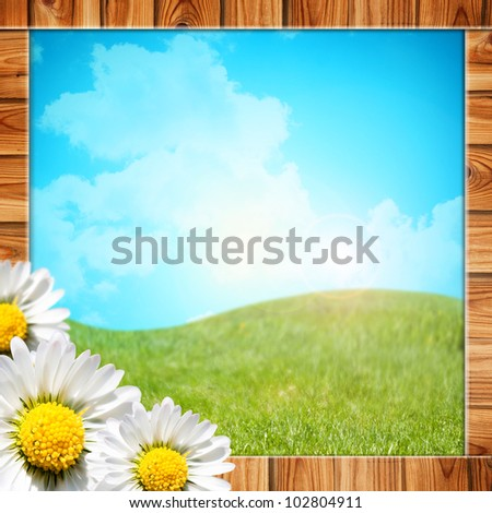 Daisy flowers  background in wood frame. Useful also as web banner or header.