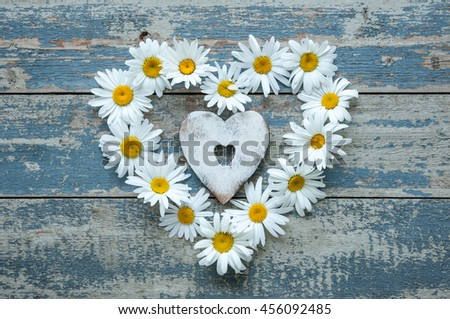 Daisy flowers in heart shape on blue painted wooden board - stock photo
