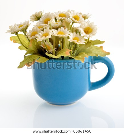 daisy in a blue ceramic cup