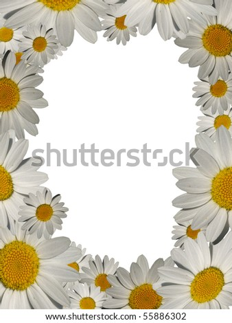 daisy picture frame with copyspace