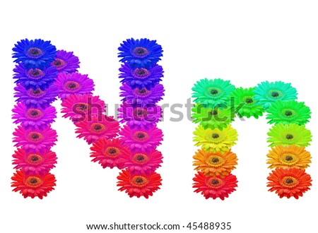 Daisy Upper and Lower Case N isolated with clipping path - stock photo