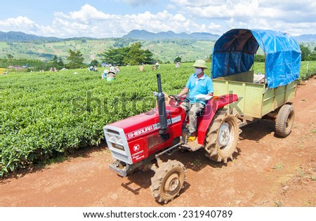 DALAT, VIETNAM - NOV 11: farmer used unidentified vehicles used to transport tea on tea farm, Da Lat, Vietnam. On Nov 11, 2014. Da lat is one of the best tourism city in Vietnam. - stock photo