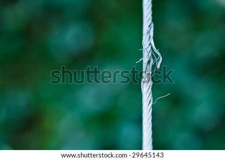 damaged steel cable. shallow depth of view. - stock photo