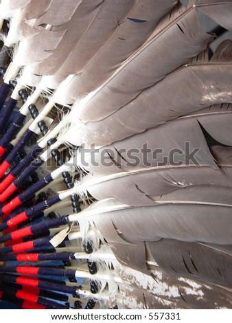 Dance Costume Feathers - stock photo