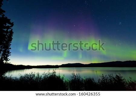 Dancing Northern lights  Aurora borealis  in summer over northern horizon of Lake Laberge  Yukon Territory  Canada  at early dawn - stock photo