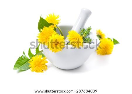 Dandelion and a mortar. Alternative medicine concept - stock photo