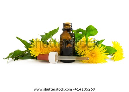 dandelion extract in a small bottle with fresh leaves and flowers isolated with shadows on a white background, medicinal herb selected focus, narrow depth of field - stock photo