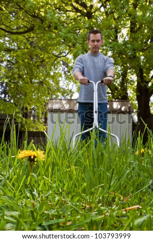 dandelion flower in focus with caucasian male out of focus with a push mower cutting the grass
