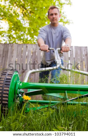 dandelion flower in focus with caucasian male out of focus with a push mower cutting the grass - stock photo