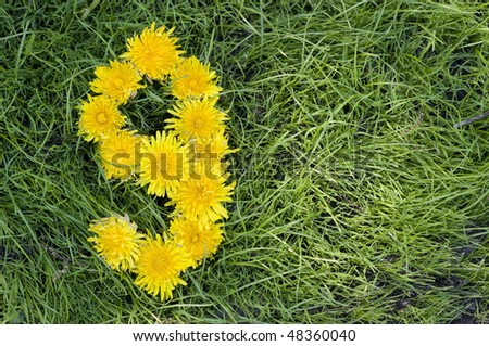 Dandelion flowers in a shape of a nine on green grass background. - stock photo