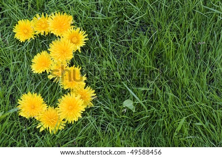 Dandelion flowers in a shape of a number three on green grass background. - stock photo