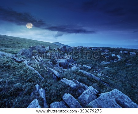 dandelions among white sharp stones on the hillside meadow on top of mountain range at night in full moon light - stock photo