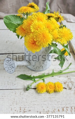 dandelions in a watering can